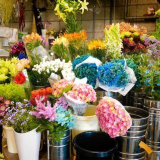 花や草(大宮市場)